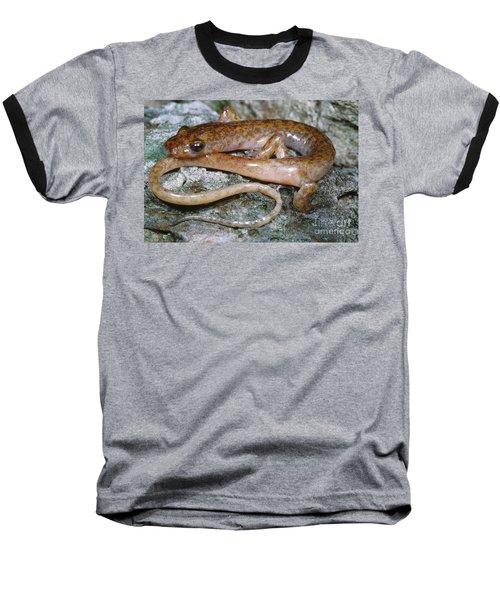 Cave Salamander Baseball T-Shirt by Dante Fenolio