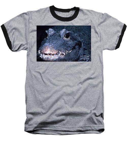 African Dwarf Crocodile Baseball T-Shirt by Dante Fenolio