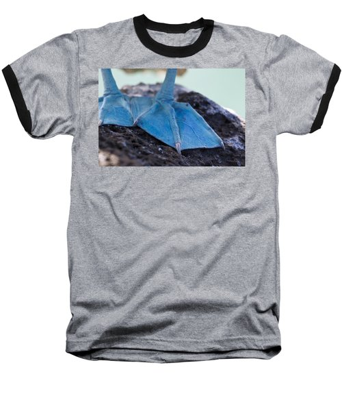 Blue Footed Booby Baseball T-Shirt by Dave Fleetham