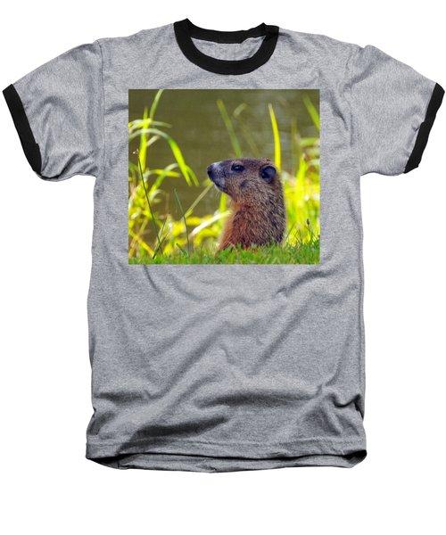 Chucky Woodchuck Baseball T-Shirt by Paul Ward