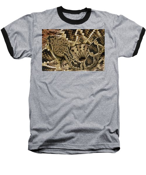 Eastern Diamondback Rattlesnake Baseball T-Shirt by Gerry Ellis