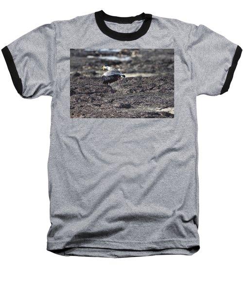 Gracious Ascent Baseball T-Shirt by Douglas Barnard