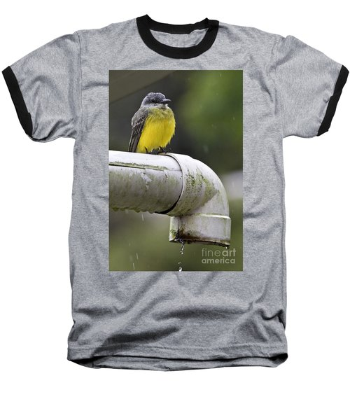 Grey-capped Flycatcher Baseball T-Shirt by Heiko Koehrer-Wagner
