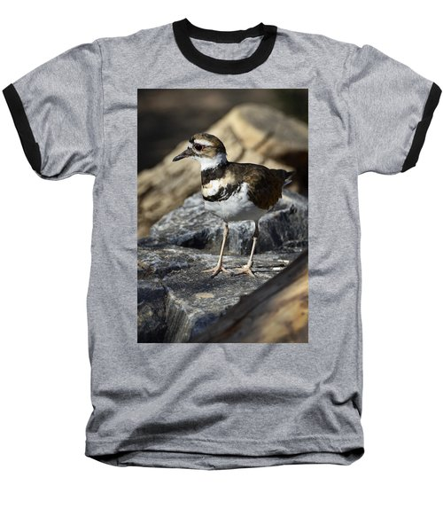 Killdeer Baseball T-Shirt by Saija  Lehtonen