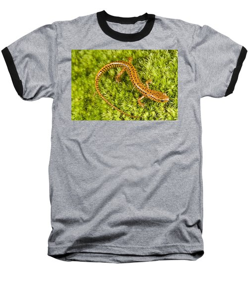 Longtail Salamander Eurycea Longicauda Baseball T-Shirt by Jack Goldfarb