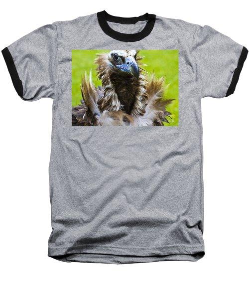 Monk Vulture 4 Baseball T-Shirt by Heiko Koehrer-Wagner