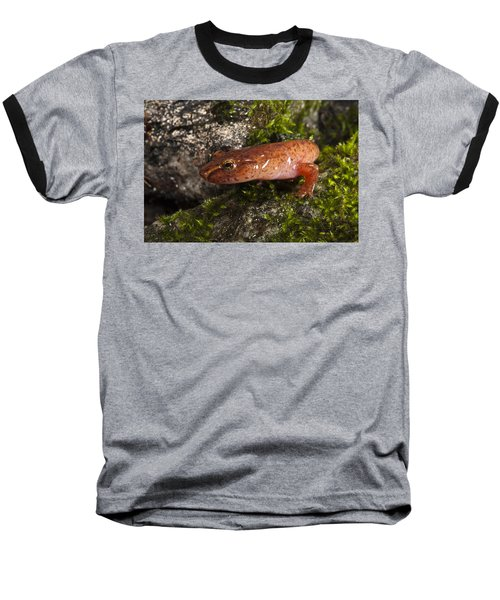 Northern Spring Salamander Gyrinophilus Baseball T-Shirt by Pete Oxford