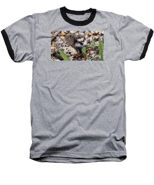 Killdeer Baby - Photo 25 Baseball T-Shirt by Travis Truelove