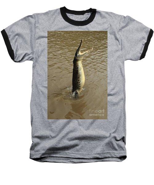 Salt Water Crocodile Baseball T-Shirt by Bob Christopher