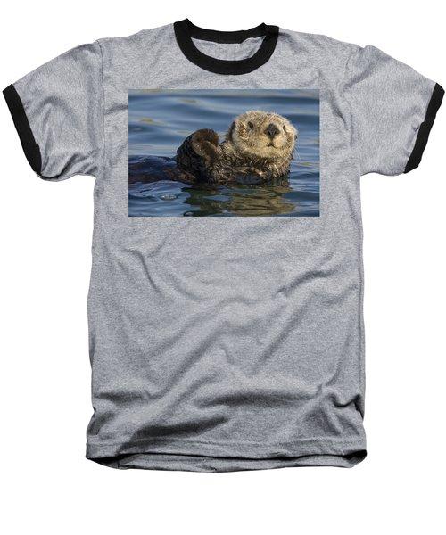 Sea Otter Monterey Bay California Baseball T-Shirt by Suzi Eszterhas