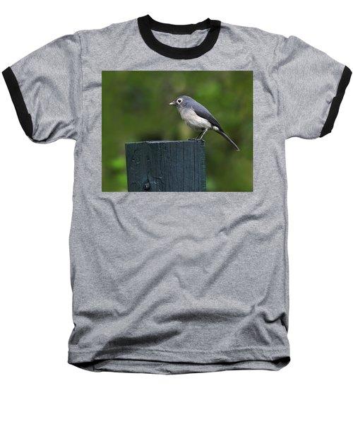 White-eyed Slaty Flycatcher Baseball T-Shirt by Tony Beck