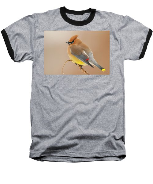 Cedar Wax Wing Baseball T-Shirt by Carl Shaw