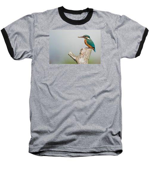 Kingfisher Baseball T-Shirt by Paul Neville