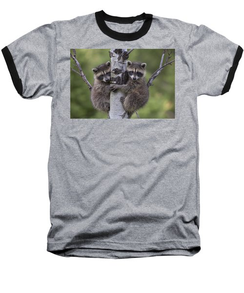 Raccoon Two Babies Climbing Tree North Baseball T-Shirt by Tim Fitzharris