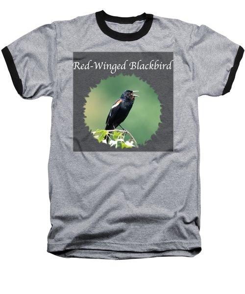 Red-winged Blackbird Baseball T-Shirt by Jan M Holden