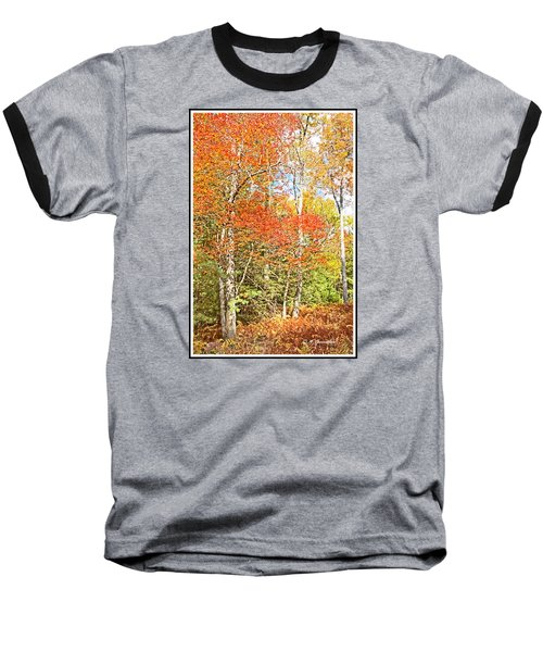 Baseball T-Shirt featuring the digital art Forest Interior Autumn Pocono Mountains Pennsylvania by A Gurmankin