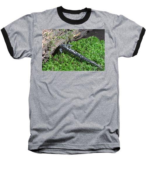 Slimy Salamander Baseball T-Shirt by Ted Kinsman