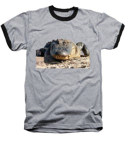 Alligator Approach .png Baseball T-Shirt by Al Powell Photography USA