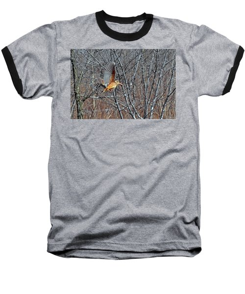 American Woodcock In Takeoff Flight Baseball T-Shirt by Asbed Iskedjian
