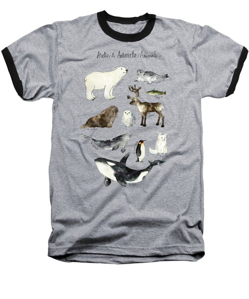 Arctic And Antarctic Animals Baseball T-Shirt by Amy Hamilton