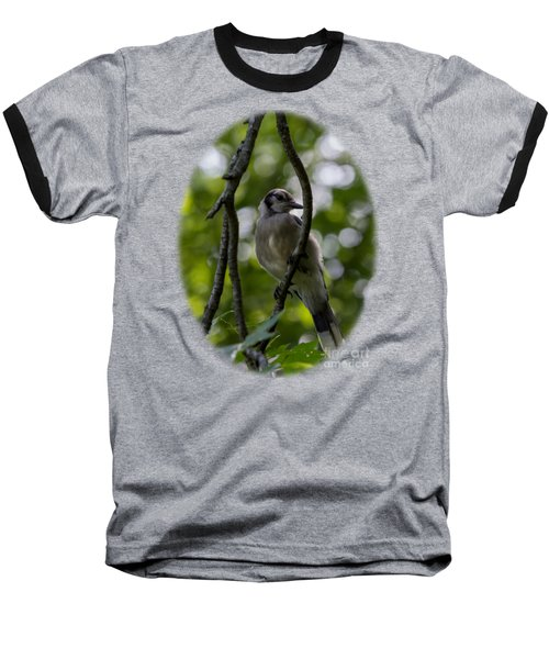 Afternoon Perch Baseball T-Shirt by Brian Manfra