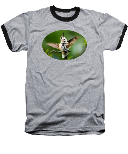 Hummingbird Happy Dance Baseball T-Shirt by Christina Rollo