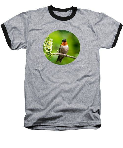 Male Ruby-throated Hummingbird With Showy Gorget Baseball T-Shirt by Christina Rollo
