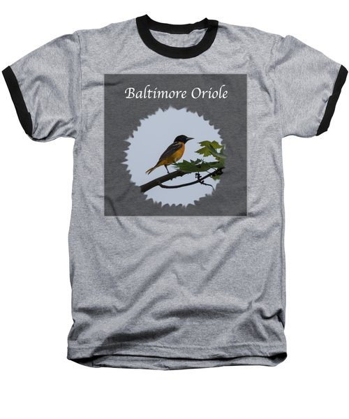 Baltimore Oriole  Baseball T-Shirt by Jan M Holden