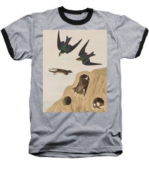 Bank Swallows Baseball T-Shirt by John James Audubon