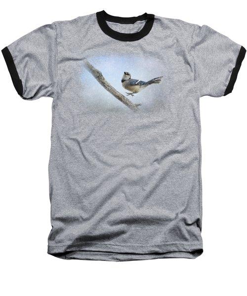 Blue Jay In The Snow Baseball T-Shirt by Jai Johnson