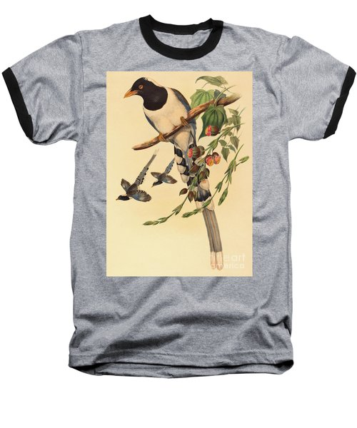 Blue Magpie, Urocissa Magnirostris Baseball T-Shirt by John Gould