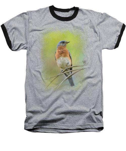 Bluebird On A Spring Day Baseball T-Shirt by Jai Johnson