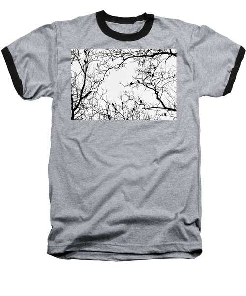 Branches And Birds Baseball T-Shirt by Sandy Taylor