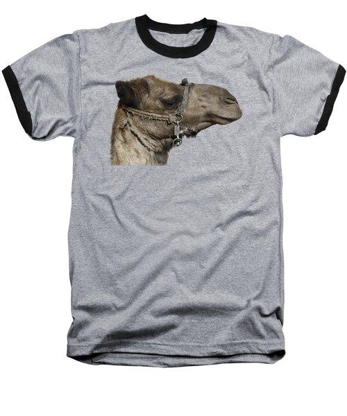 Camel's Head Baseball T-Shirt by Roy Pedersen