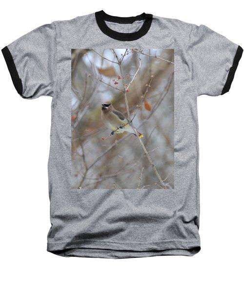 Cedar Wax Wing 2 Baseball T-Shirt by David Arment
