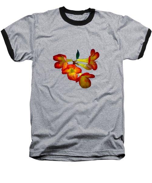 Color Burst Baseball T-Shirt by Mark Andrew Thomas