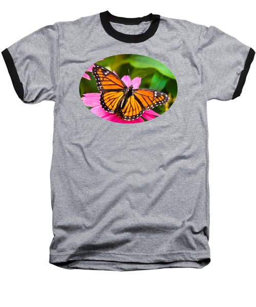 Colorful Butterflies - Orange Viceroy Butterfly Baseball T-Shirt by Christina Rollo