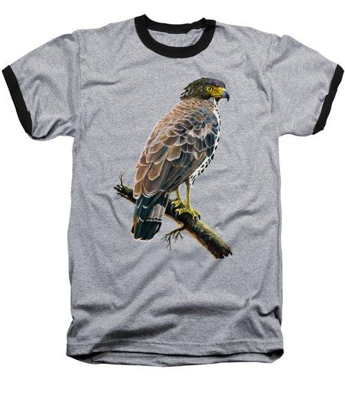 Congo Serpent Eagle Baseball T-Shirt by Anthony Mwangi