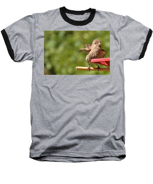 Crossbill Female At Feeder        Summer       Indiana Baseball T-Shirt by Rory Cubel