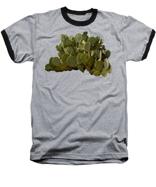 Desert Prickly-pear No6 Baseball T-Shirt by Mark Myhaver