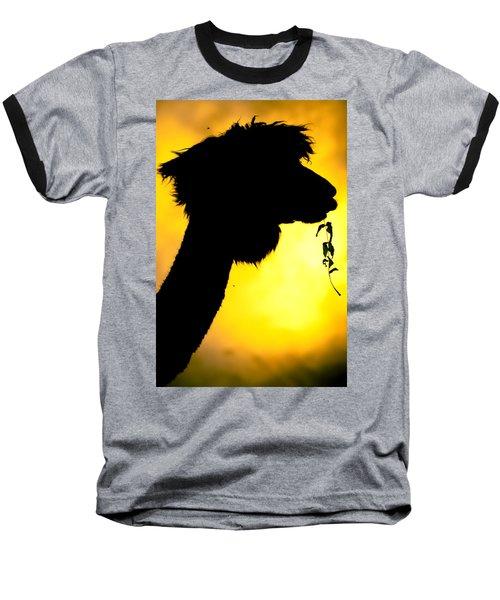 Endless Alpaca Baseball T-Shirt by TC Morgan