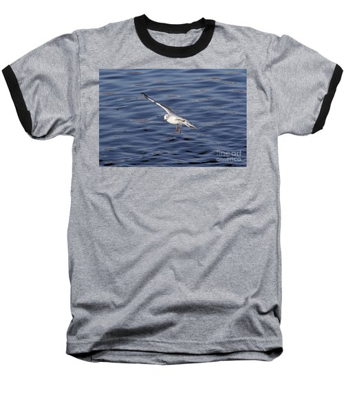 Flying Gull Baseball T-Shirt by Michal Boubin