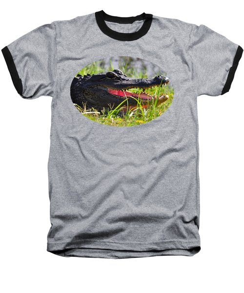 Gator Grin .png Baseball T-Shirt by Al Powell Photography USA