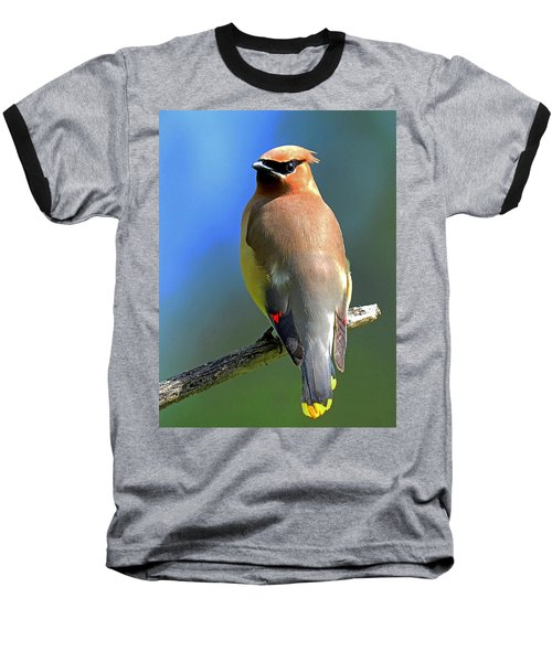 Baseball T-Shirt featuring the photograph Gorgeous Cedar Waxwing by Rodney Campbell