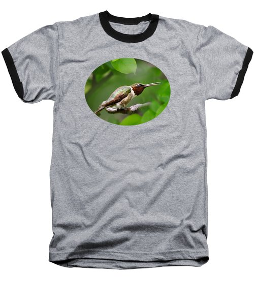Hummingbird Hiding In Tree Baseball T-Shirt by Christina Rollo