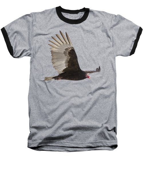 Isolated Turkey Vulture 2014-1 Baseball T-Shirt by Thomas Young