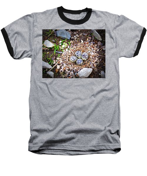 Killdeer Nest Baseball T-Shirt by Cricket Hackmann