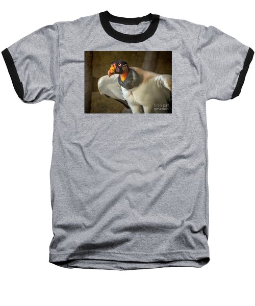 King Vulture Baseball T-Shirt by Jamie Pham