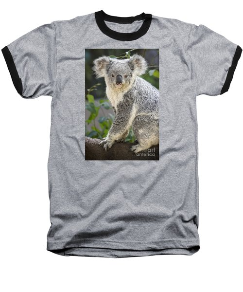 Koala Female Portrait Baseball T-Shirt by Jamie Pham
