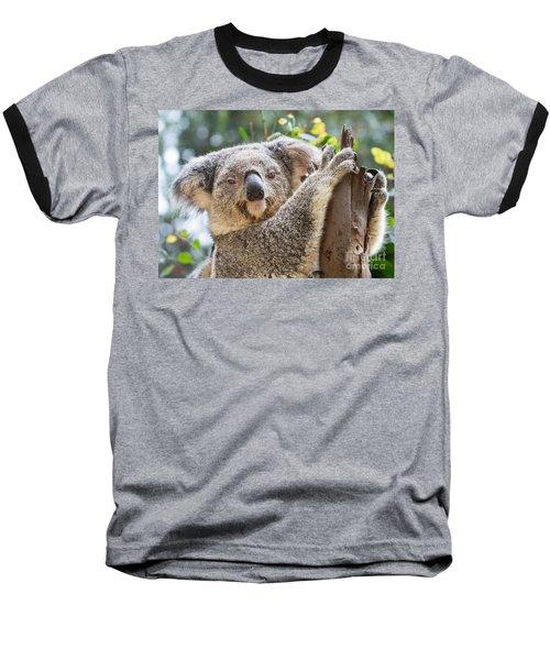 Koala On Tree Baseball T-Shirt by Jamie Pham